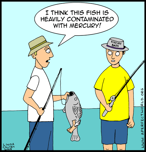 I think this fish is contaminated with mercury