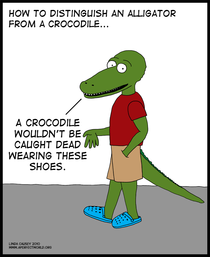 A crocodile would never wear Crocs