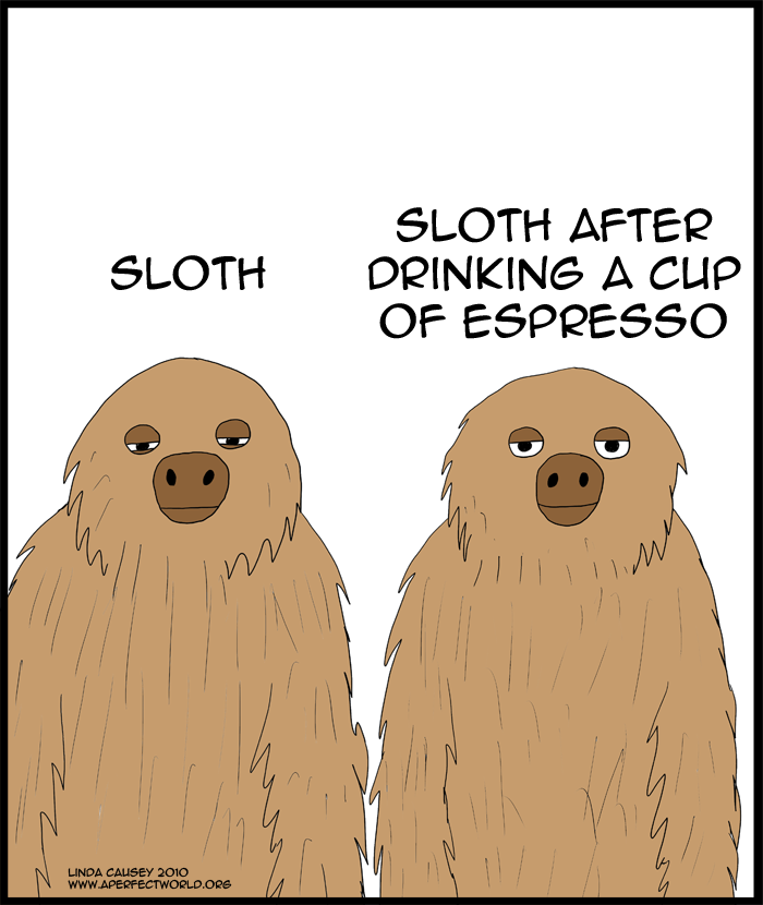Regular sloth and a sloth after a cup of espresso