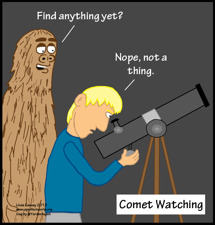 What you miss when looking for comets