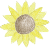 sunflower.png (112005 bytes)